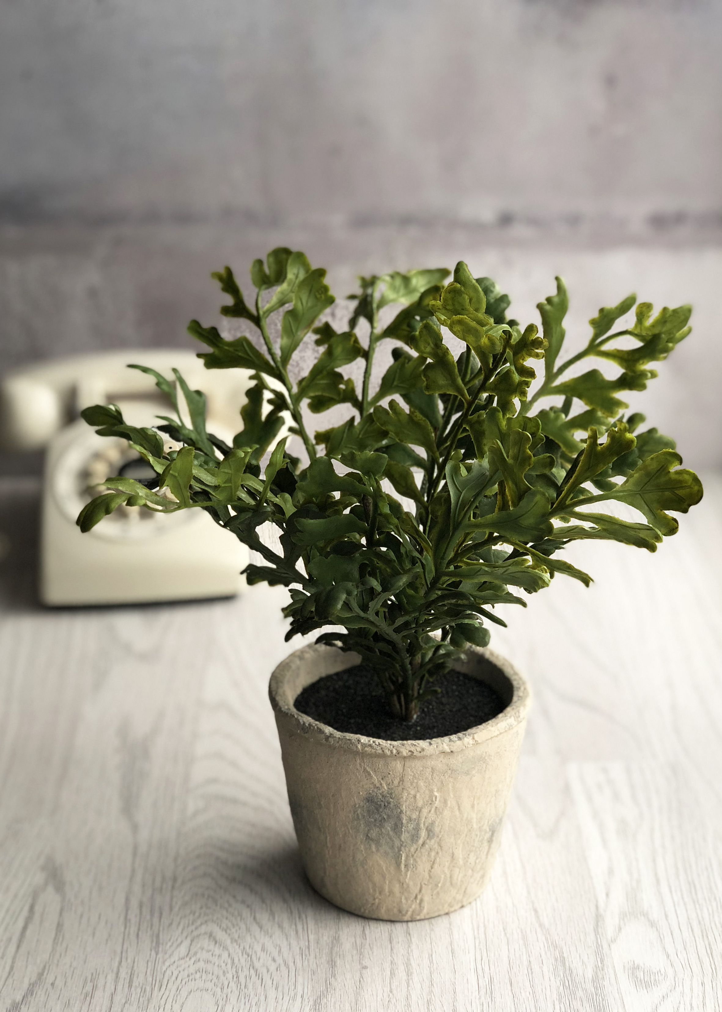 The Great Faux Plant Home Trend The Interior Editor